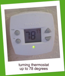 Week In Photos-Thermostat 79