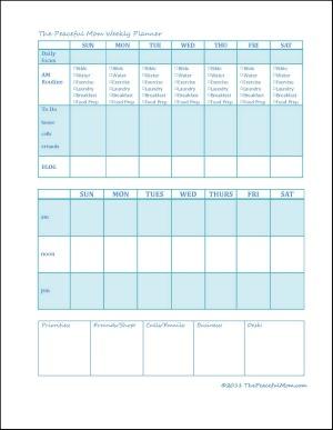 TPM Weekly Planner 3 Jpeg Framed 300x387