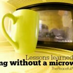 Why We Live WITHOUT a Microwave
