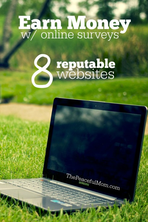 Earn Money Online with these 8 legitimate and reputable online survey companies -- click for details -- The Peaceful Mom