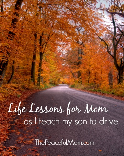 Life Lessons as I Teach my Son to Drive - The Peaceful Mom
