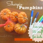 Sharpie Mini Pumpkins - easy Fall craft for kids - The Peaceful Mom