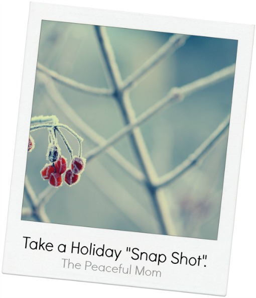 Take A Holiday Snap Shot--The Peaceful Mom