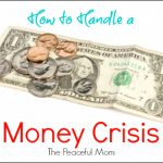 How to Handle a Money Crisis--The Peaceful Mom