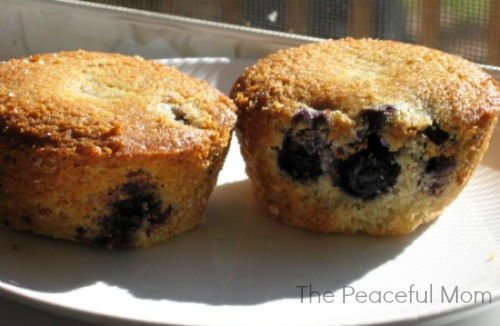 Blueberry Muffins--The Peaceful Mom-