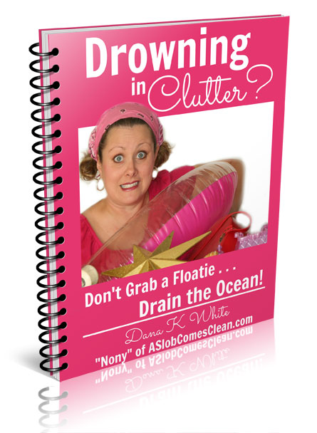 Drowning in Clutter ebook