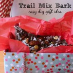 Trail Mix Bark - DIY Gift Idea from The Peaceful Mom