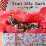 DIY Trail Mix Bark