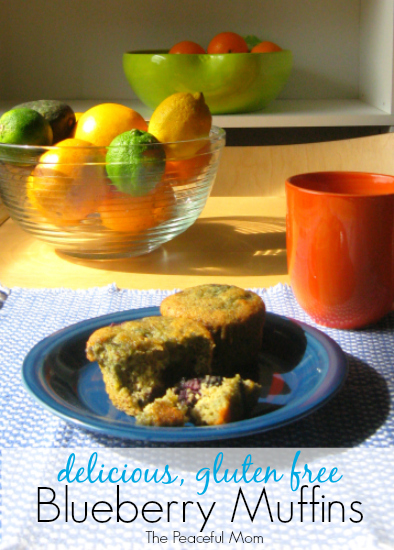 Delicious Gluten Free Blueberry Muffin Recipe - The Peaceful Mom