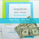Organize Your Money - New Year New You (financially speaking) - The Peaceful Mom