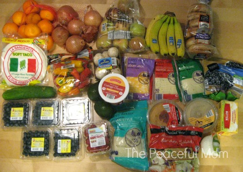 Save Money - Shopping at Aldis - Jan 2014 --The Peaceful Mom