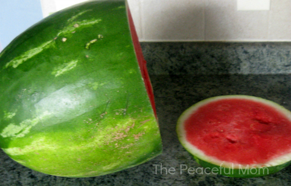 Watermelon Freezer Pops - - Slice the Watermelon - The Peaceful Mom