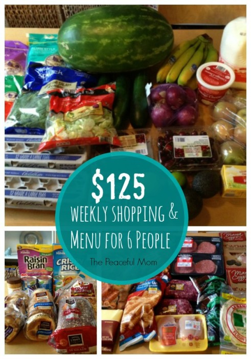 $125 Budget Grocery Shopping for 6 People August 1 2014 - The Peaceful Mom