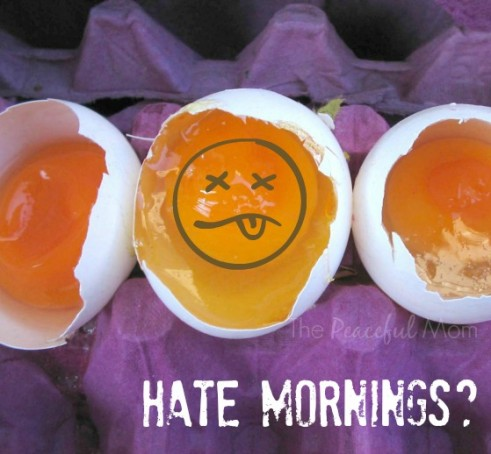Marvelous Mornings Mini Course - Hate Mornings - The Peaceful Mom