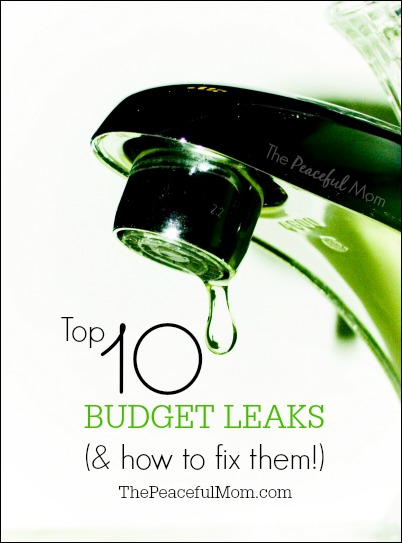 Top 10 Budget Leaks - The Peaceful Mom -