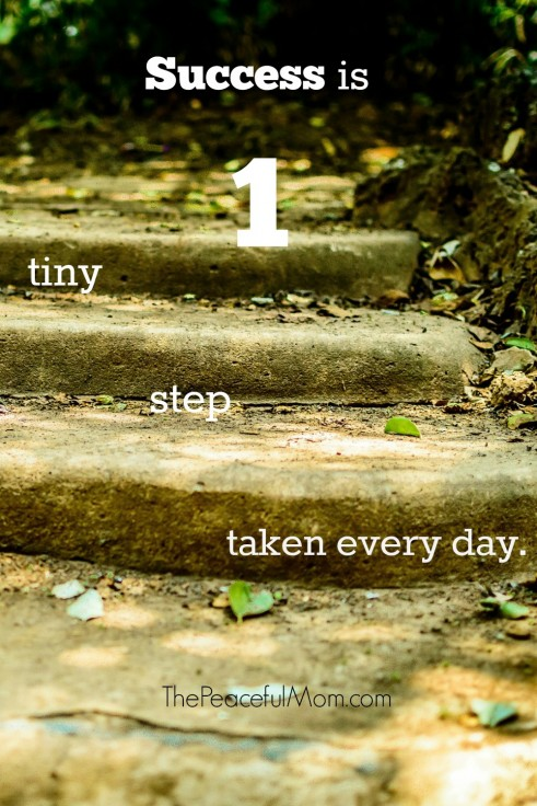Success is 1 Tiny Step Taken Every Day -- The Peaceful Mom