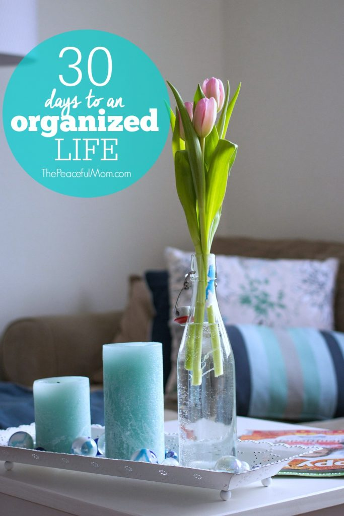 30 Days to an Organized Life -- The Peaceful Mom 3