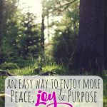 An easy way to enjoy more peace - joy- and purpose -- The Peaceful Mom