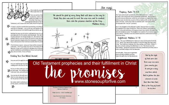 1 11 Pages from The Promises Study