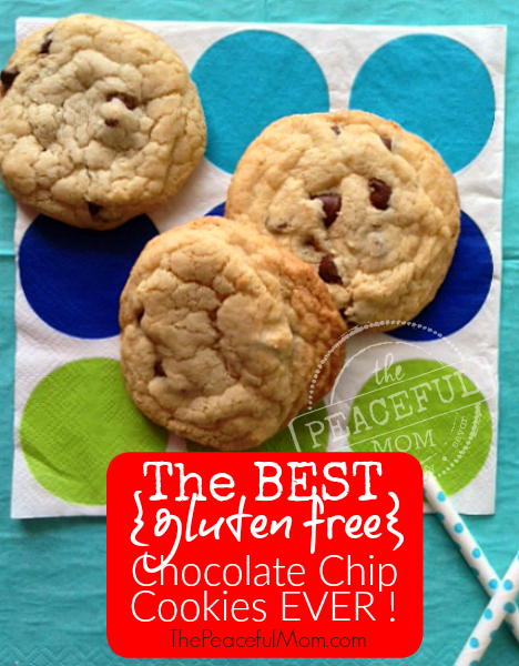 Best Gluten Free Chocolate Chip Cookies Ever -- I promise -- from The Peaceful Mom Gluten Free (2)