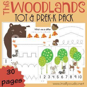 Free-Woodlands-Preschool-Printable-Pack