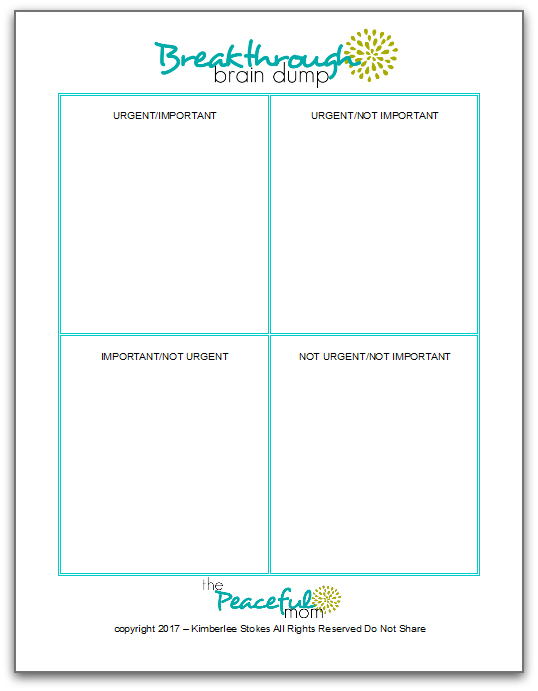 picture regarding Brain Dump Printable named How in the direction of Set up Once Youre Confused - The Relaxed Mother
