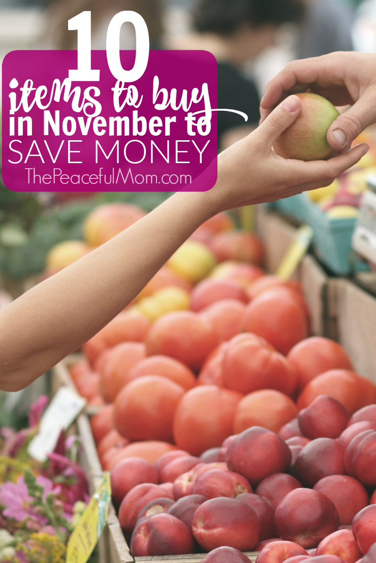 10-things-to-buy-in-november-to-save-money-the-peaceful-mom